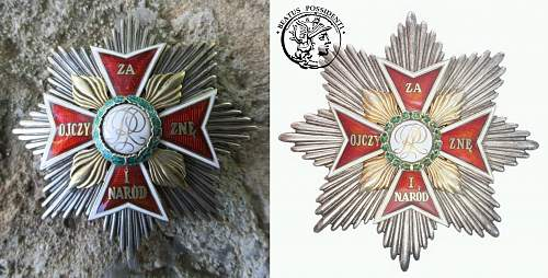 "Star of the ""Order of the White Eagle"""