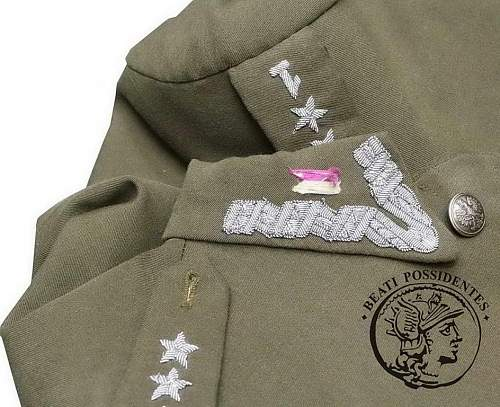 Wz.36 1st Cavalry regiment (1 Pulk Ulanow) Captain's tunic 100% original prewar, please ?