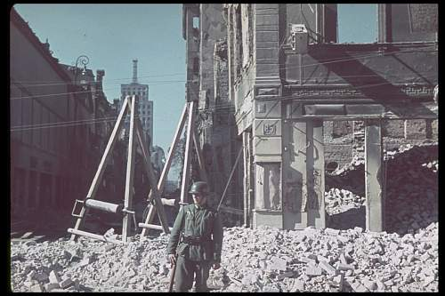 Click image for larger version.  Name:140829-nazi-invasion-poland-jaeger-1939-13.jpg Views:73 Size:106.1 KB ID:734640