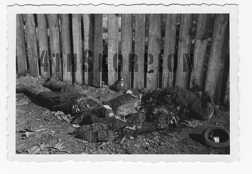 Click image for larger version.  Name:Dead_Polish_soldier02.jpg Views:342 Size:150.6 KB ID:74298