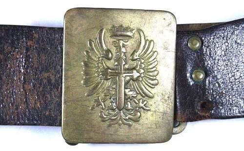 Polish ? cloth shield ..any ideas ???