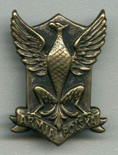 Click image for larger version.  Name:Armia Polska Eagle_edited.JPG Views:222 Size:67.7 KB ID:80608