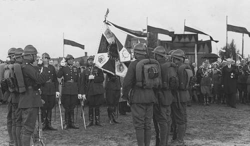 Click image for larger version.  Name:37PP June 1933 of President Moscicki 37pp Colour Party under the command of Por Wladyslaw Krotki.jpg Views:44 Size:84.9 KB ID:813851