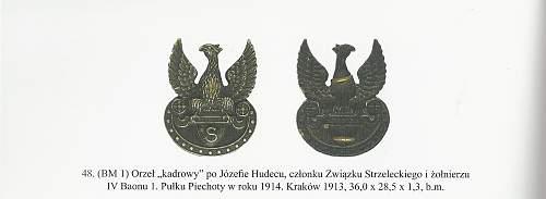 """Eagle badge of Rifelmen's Association """"Rifelman""""(""""Strzelec"""")"""