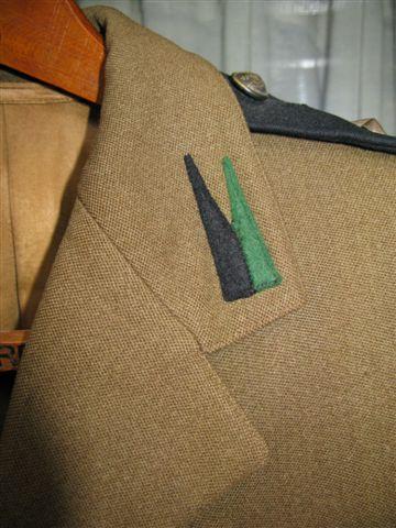 Polish 1st Amoured SD tunic