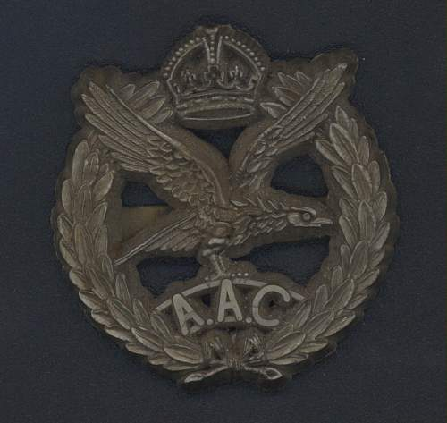 Click image for larger version.  Name:AAC Cap badge plastic front.jpg Views:318 Size:237.1 KB ID:104966