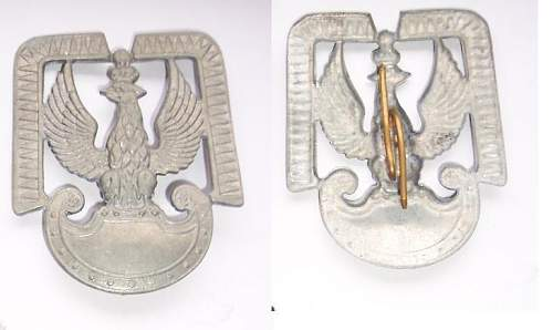 Click image for larger version.  Name:Polish Eagle France 1.JPG Views:89 Size:35.2 KB ID:106042