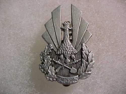 Polish Badge, real?, unit?