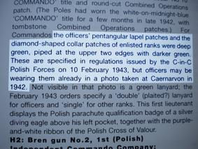 10 Commando Polish BD identification