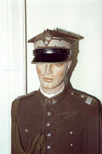 Click image for larger version.  Name:General of Brigade uniform 1c.jpg Views:121 Size:19.8 KB ID:116563