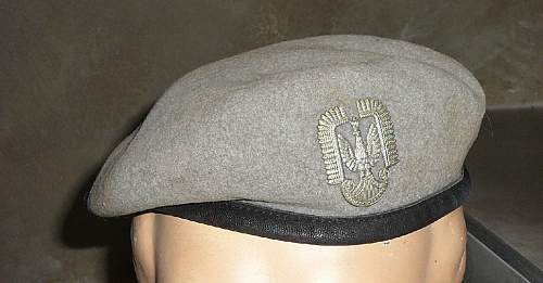 Polish airforce beret & watch