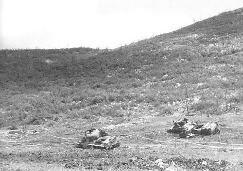 Click image for larger version.  Name:NZ tank0002 (2).jpg Views:360 Size:139.4 KB ID:122877