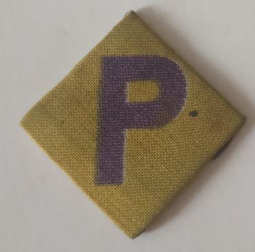 Unknow Polish Badge