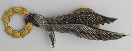 Parachute badge