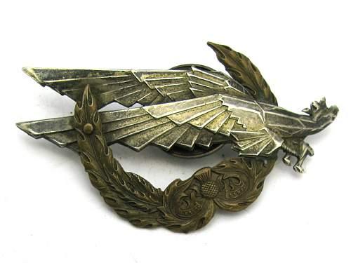 Click image for larger version.  Name:polish-paratrooper-badges_01.jpg Views:291 Size:203.2 KB ID:159273