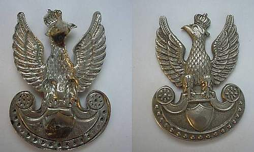 Click image for larger version.  Name:long beak.jpg Views:65 Size:73.3 KB ID:190615