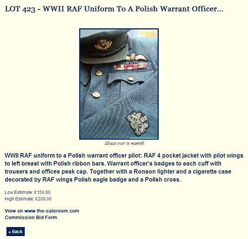 Polish RAF Tunic...