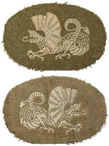 unknown patch, polish ?