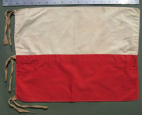 1st Polish Armoured Division Vehicle Flag - ?