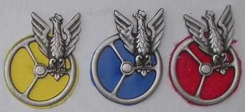 Old Polish badge