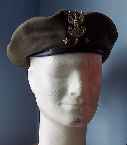 Click image for larger version.  Name:2nd Pattern beret 2.jpg Views:241 Size:140.1 KB ID:29710