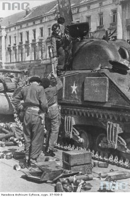 What sidearms used officially and unofficially by the Polish 1st Armoured Division?