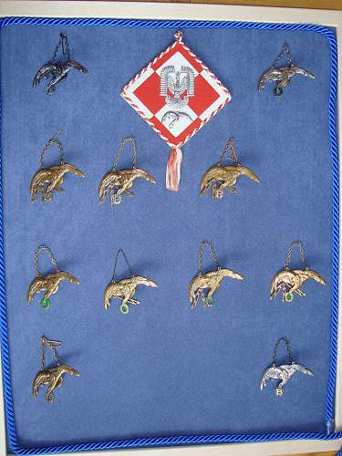 Polish AirForce Badges Gallery