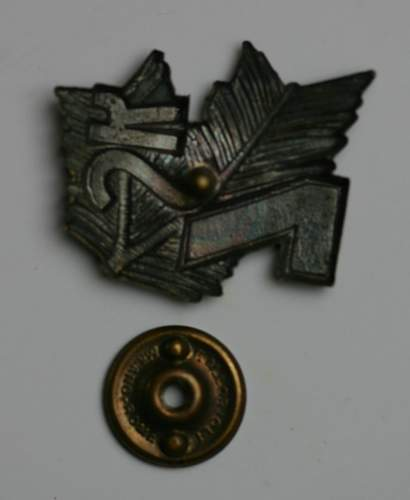 7th Carpathian badge - What do you think?