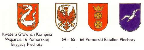 Click image for larger version.  Name:16 Pomorska Brygada Piechoty.jpg Views:231 Size:76.2 KB ID:326298