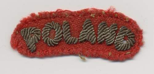 Click image for larger version.  Name:cloth badge - Poland.jpg Views:67 Size:157.9 KB ID:332581