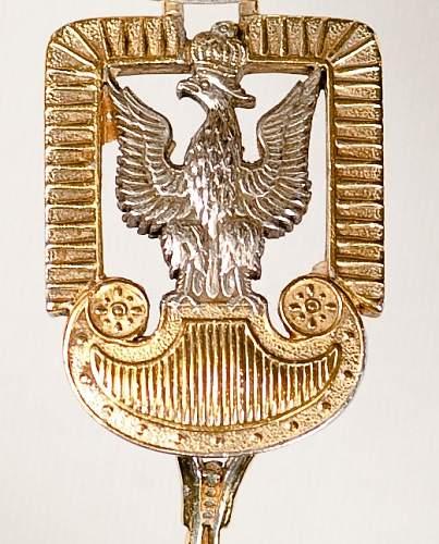 Click image for larger version.  Name:Polish_Eagle_badge.jpg Views:121 Size:54.2 KB ID:361178