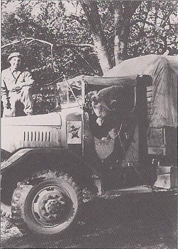 Polish Mascots WWII
