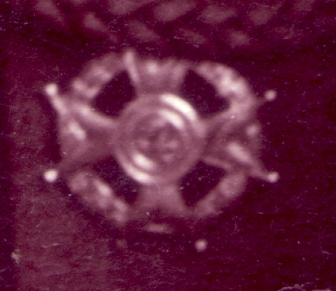 Unknown Polish (?) badge to ID.