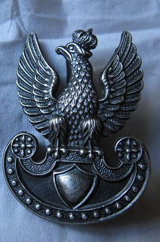 Click image for larger version.  Name:Eagle_Badge_1.jpg Views:138 Size:94.0 KB ID:466956