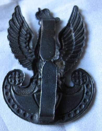 Click image for larger version.  Name:Eagle_Badge_3.jpg Views:106 Size:166.4 KB ID:466958