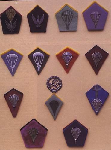 Polish Airborne Collar Kite Query