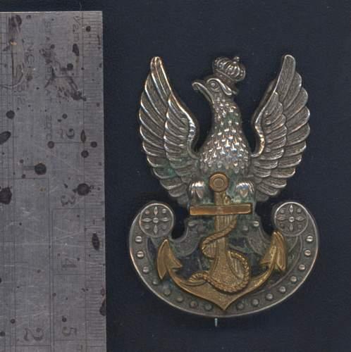 Click image for larger version.  Name:Pol nav eagle front.jpg Views:50 Size:152.8 KB ID:538344