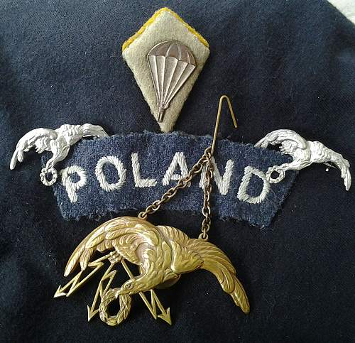 Nice set of Polish Air Force in WW2