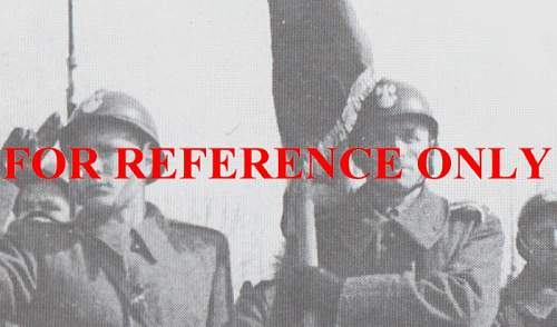 Click image for larger version.  Name:Adrian 2nd Rifle Division France 1940.JPG Views:271 Size:89.6 KB ID:59708
