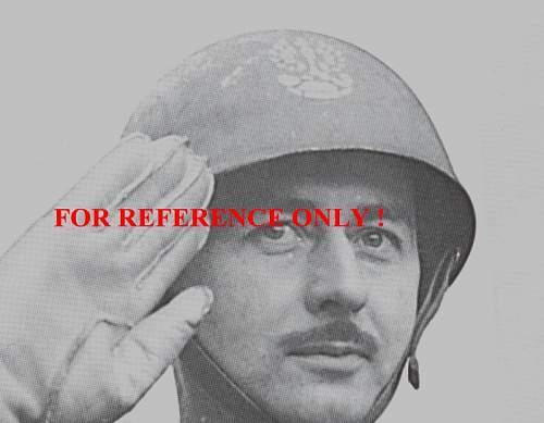 Click image for larger version.  Name:AFV 1st Corp Breda 1944.JPG Views:326 Size:76.2 KB ID:59709