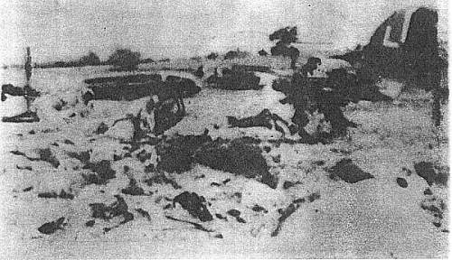Stories of Poles at war