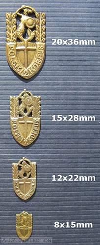 Click image for larger version.  Name:II Korpus Pamiatkowa Odznaka  sizes.jpg Views:139 Size:227.9 KB ID:623036