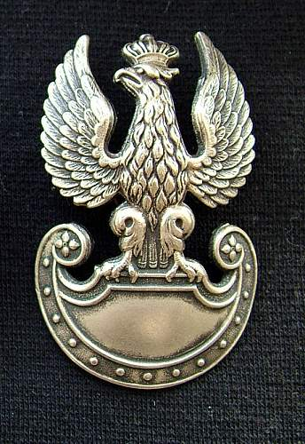Click image for larger version.  Name:eagle front.jpg Views:60 Size:61.9 KB ID:630039