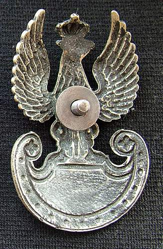 Click image for larger version.  Name:eagle rear.jpg Views:72 Size:75.7 KB ID:630040