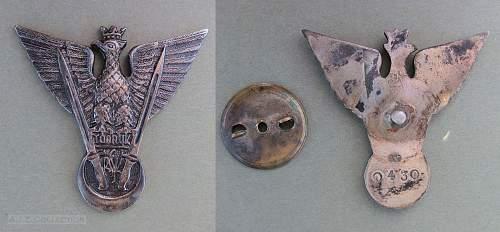 Tobruk badge