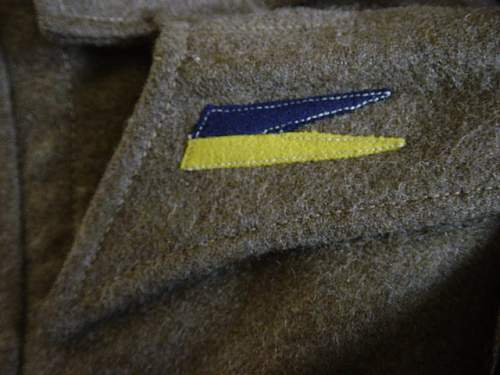 Click image for larger version.  Name:Polish 1st Armoured Div BD Blouse. 004.jpg Views:173 Size:154.0 KB ID:6522