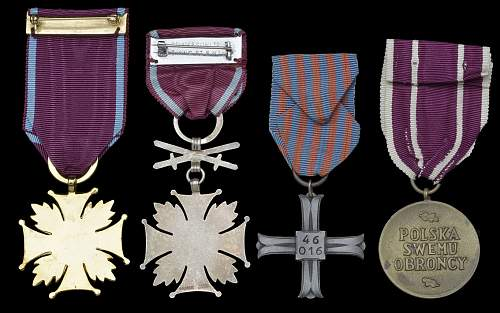 Click image for larger version.  Name:DNWMedals_98724_Photo7%20data.jpg Views:37 Size:86.1 KB ID:667867