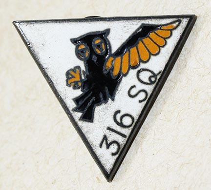 Polish Air Force Badges Opinions