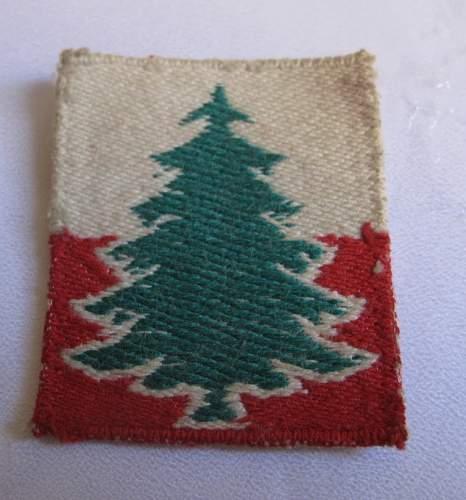 3rd DSK (Dywizja Strelcow Karpackich) cloth insignia