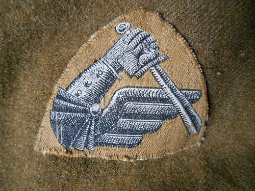Polish 8th Army patch, 2nd Korpus, Amd. Div. ; opinions needed